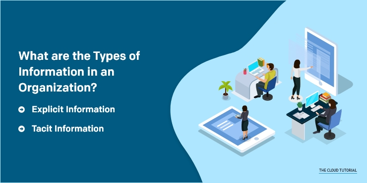 What are the Types of Information in an Organization