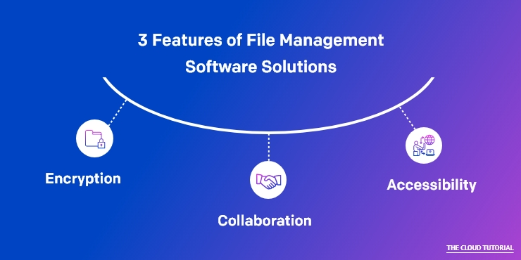 Top Features of File Management Software Solutions
