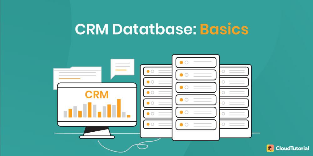 CRM Database Basics