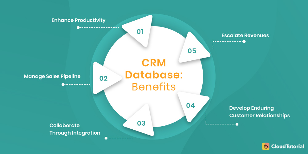 CRM Database Benefits