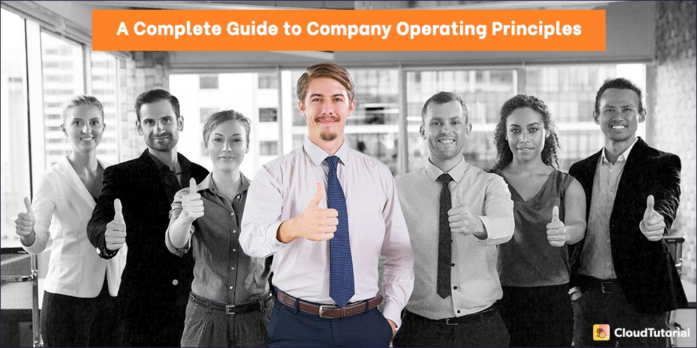 What are Operating Principles