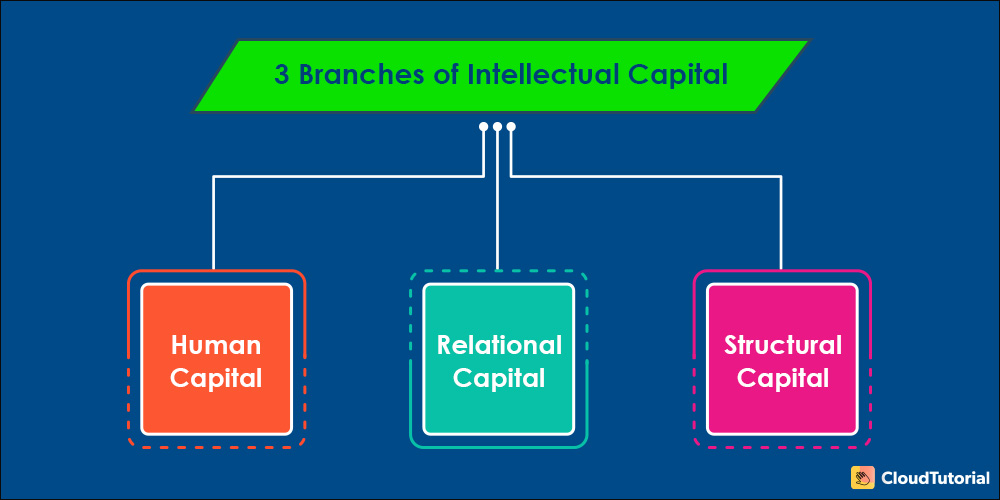 Branches of Intellectual Capital